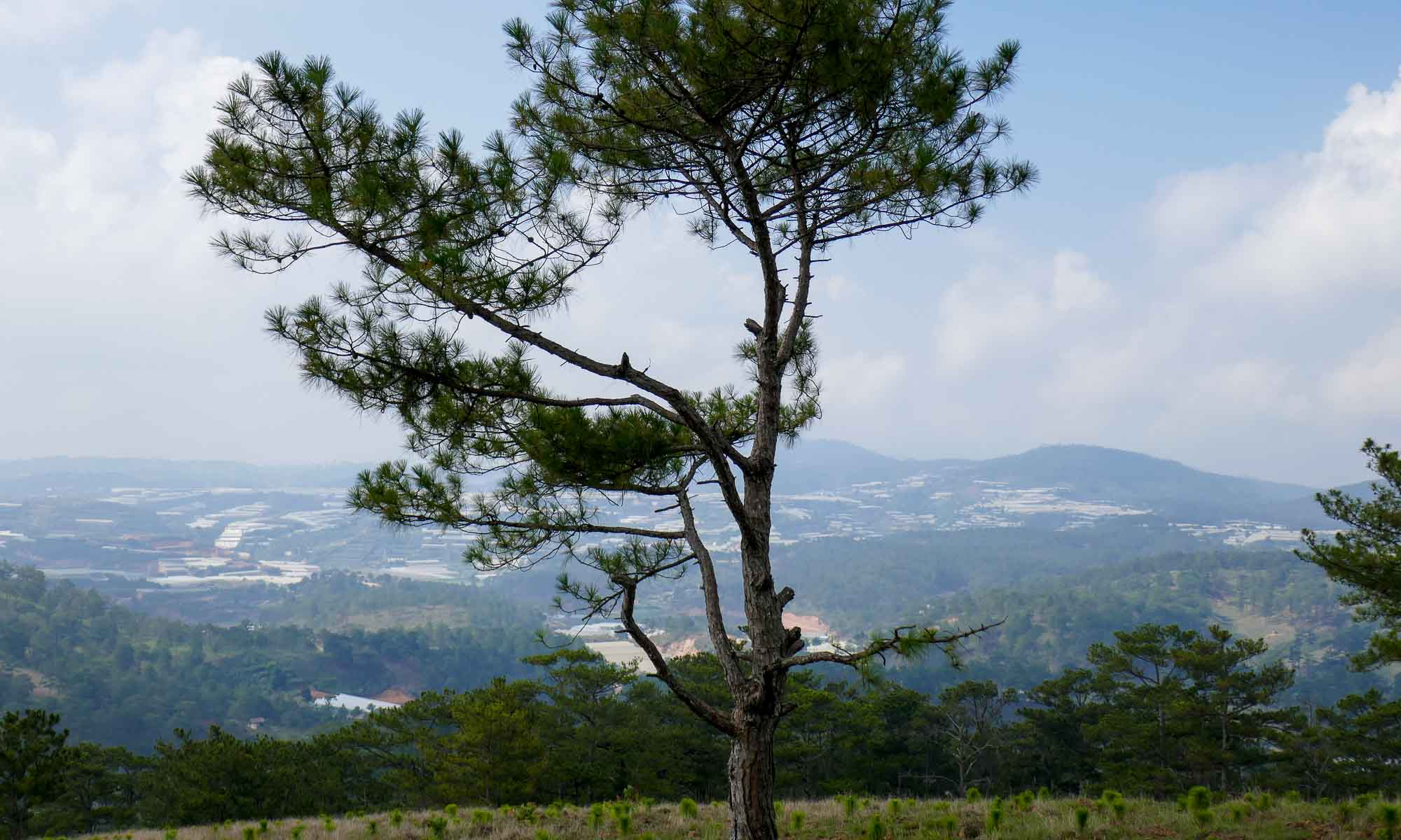View from a hill close to Da Lat