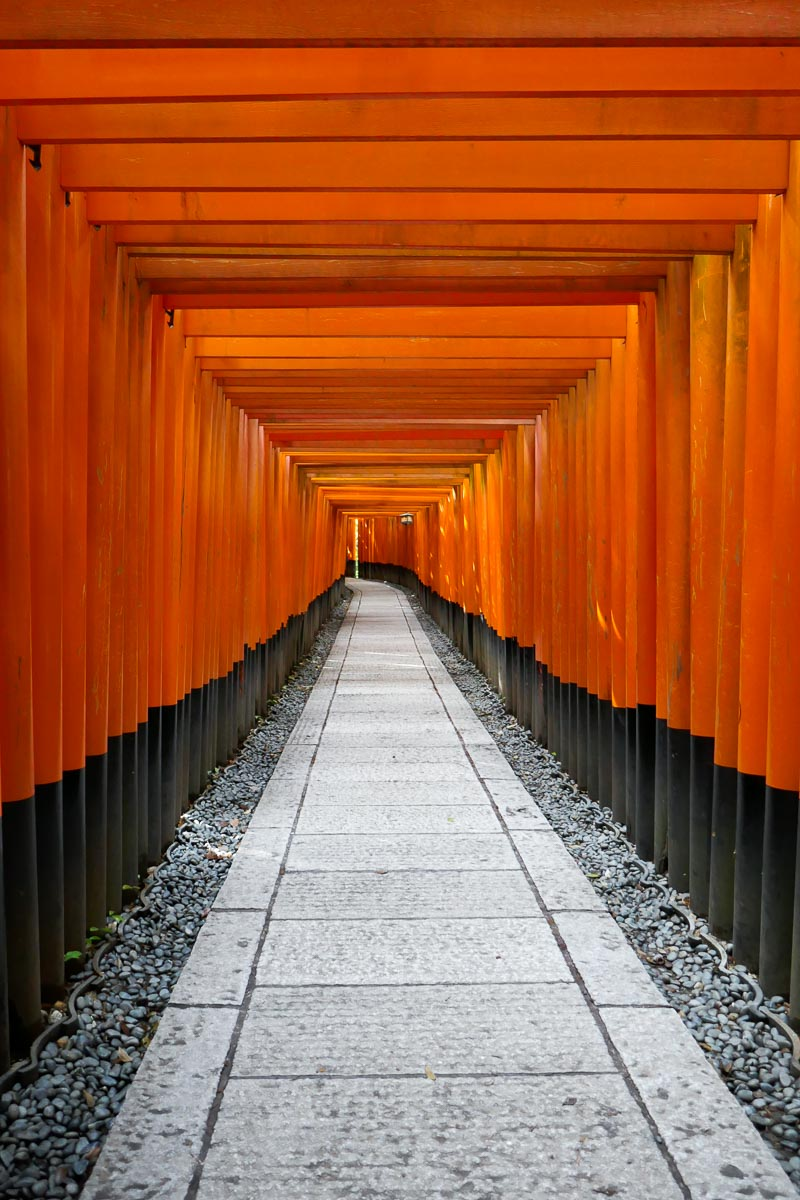A tunnel of torii