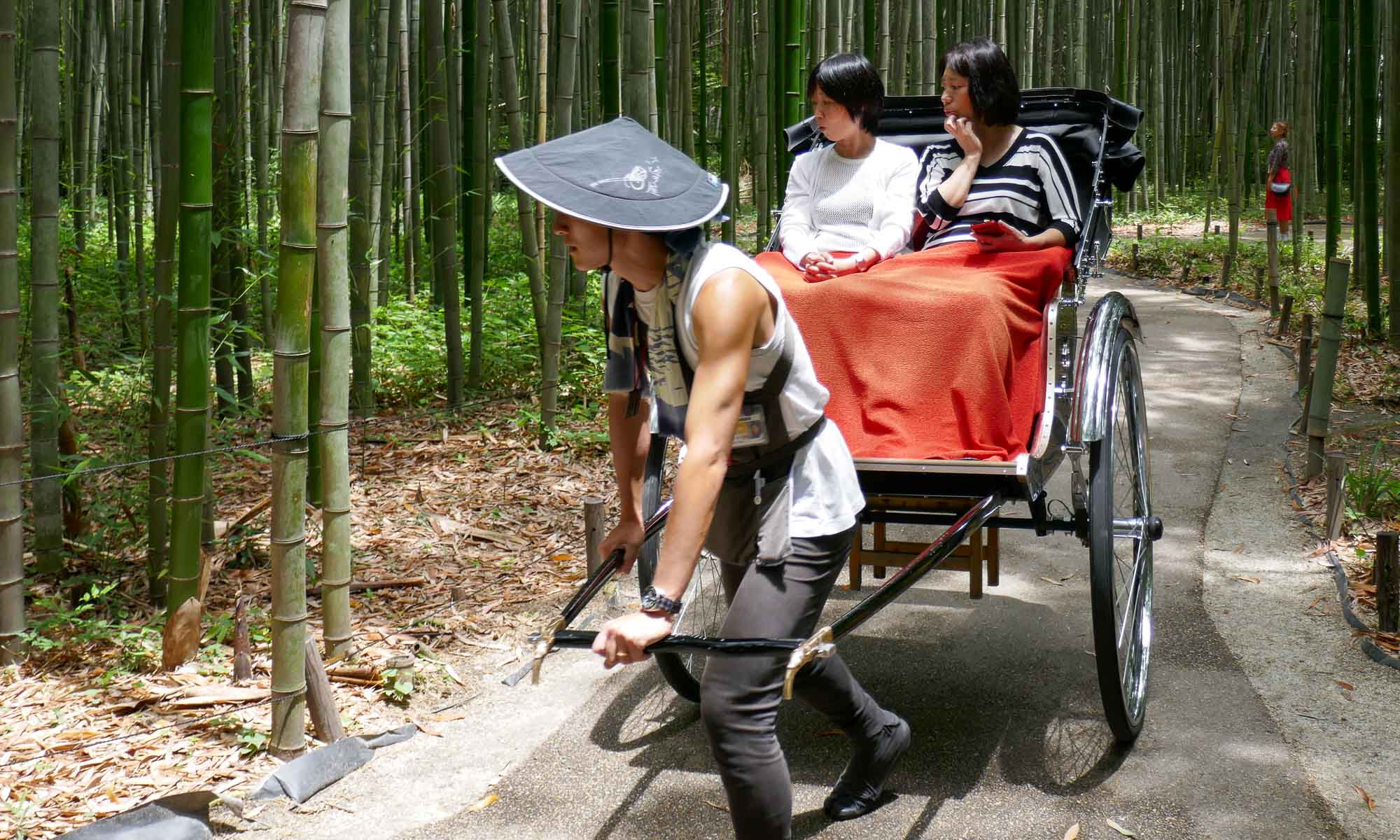 A pulled rickshaw in the forest