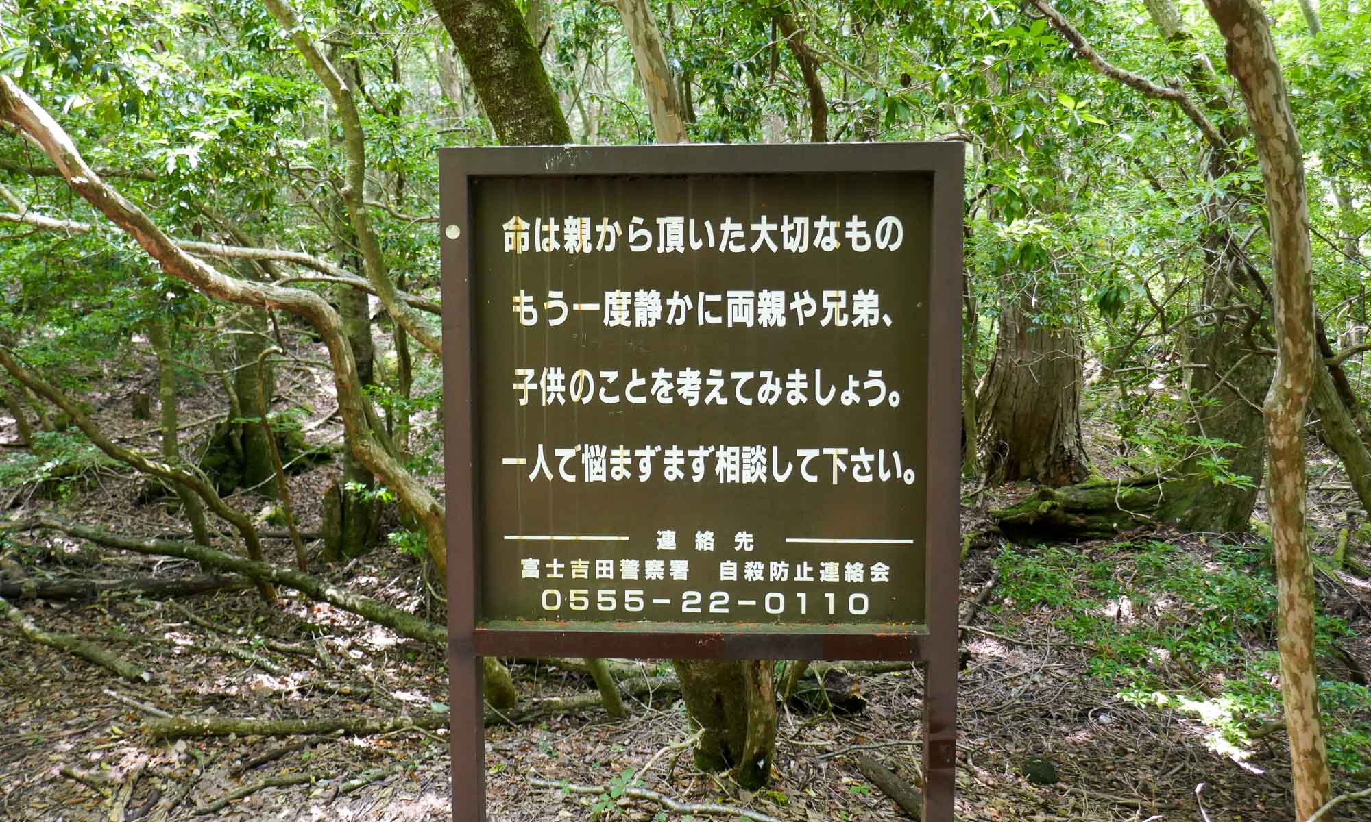 One of the signs at Aokigahara with a phone number for those feeling suicidal