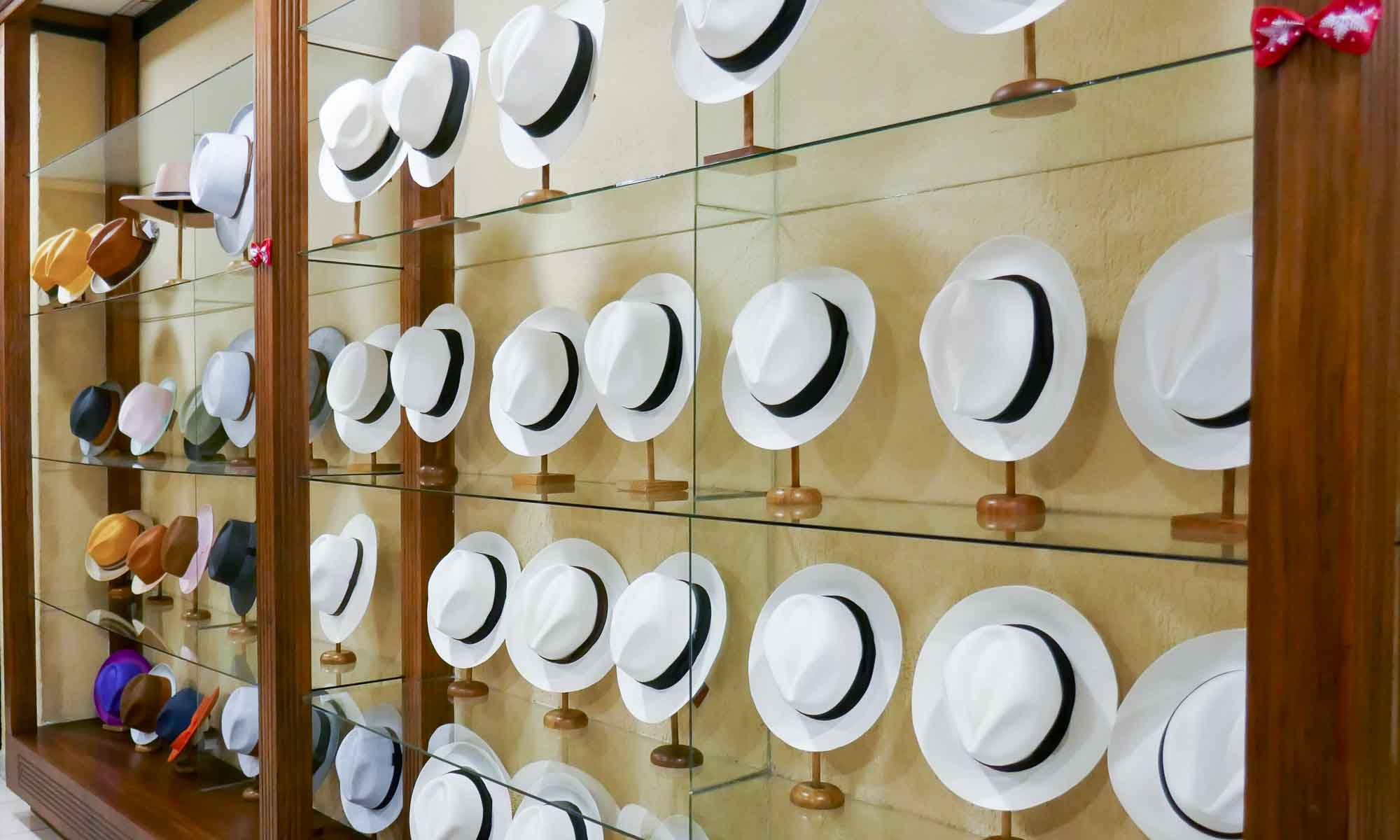 Panama hats in different sizes and qualities